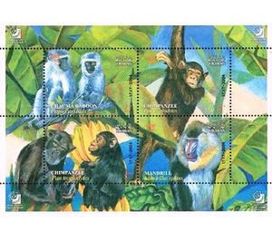 Apes - Iran 2004